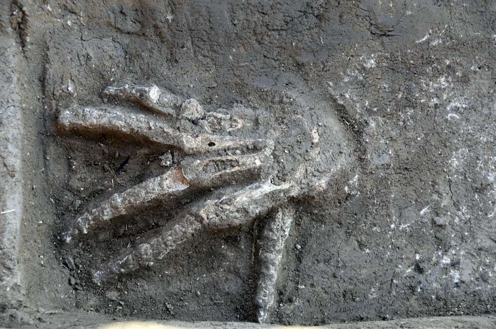 The Mystery Of 3,600-Year-Old Pits Full Of Giant Hands Was Discovered In Egypt.